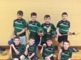 Hurling Tournament